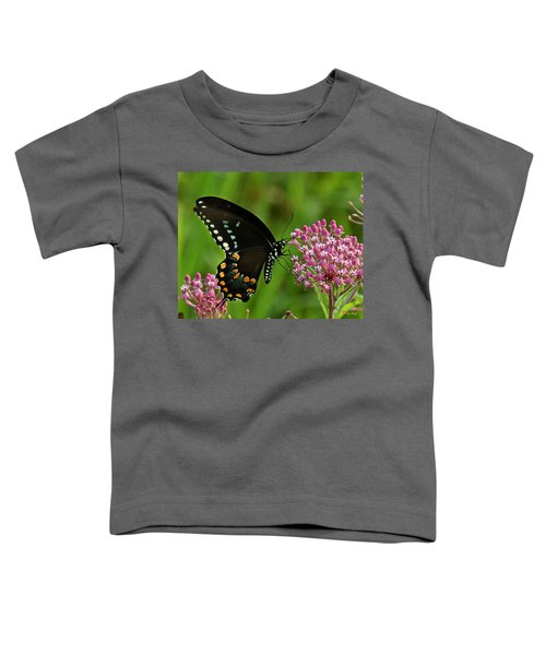 Spicebush Swallowtail Din039 Toddler T-Shirt