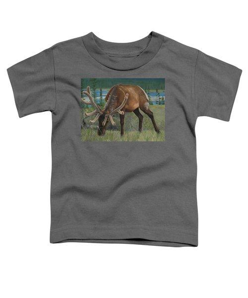 Spring Gazing Toddler T-Shirt