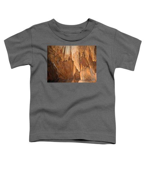 Stone Fold Elegance Toddler T-Shirt