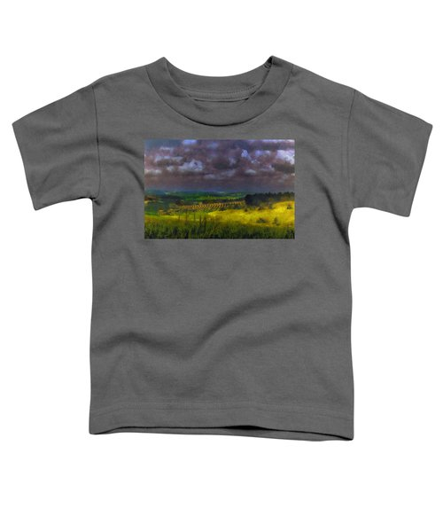 Storm Clouds Over Meadow Toddler T-Shirt