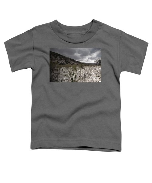 The Bank Of The Nueces River Toddler T-Shirt