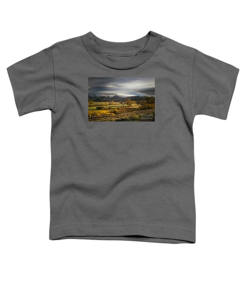 The Dallas Divide Toddler T-Shirt