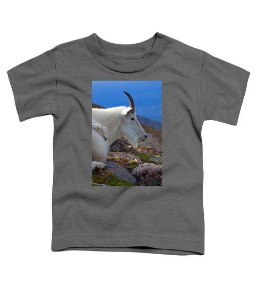 The Gathering Storm Toddler T-Shirt