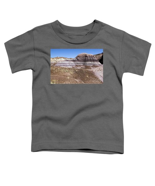 The Painted Valley Toddler T-Shirt