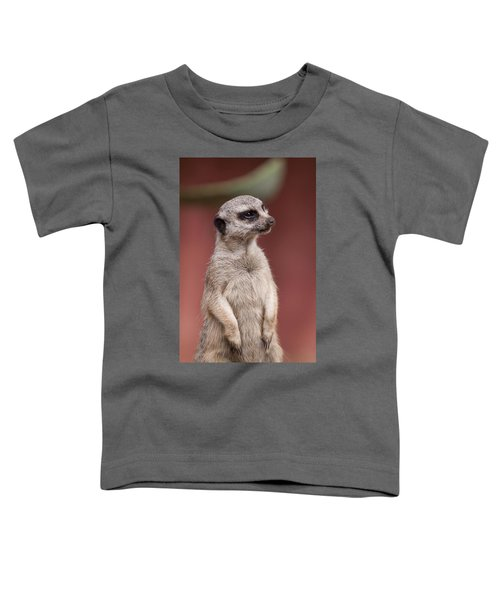 The Sentry Toddler T-Shirt