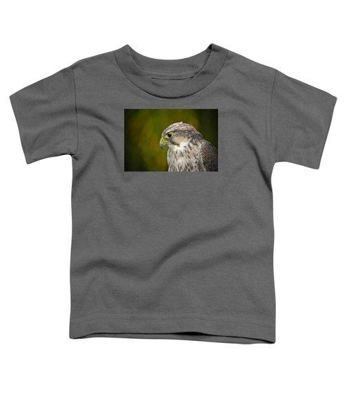 Thoughtful Kestrel Toddler T-Shirt