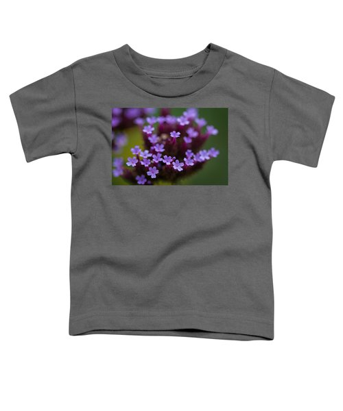 tiny blossoms II Toddler T-Shirt