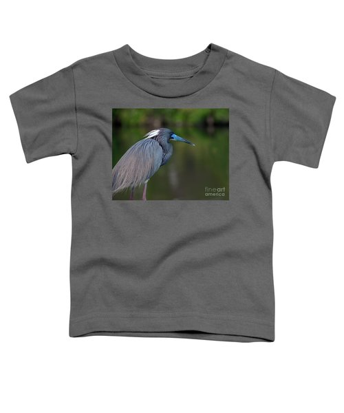Tricolored Heron Toddler T-Shirt