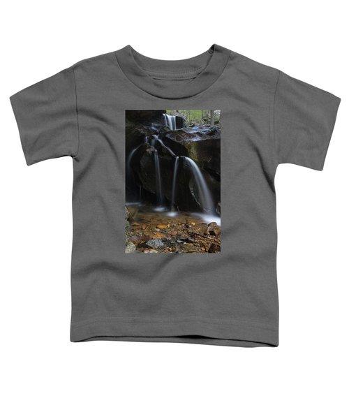 Waterfall On Emory Gap Branch Toddler T-Shirt