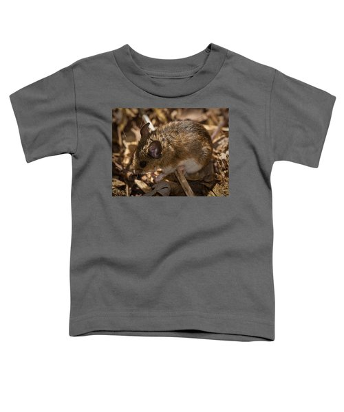 White-footed Mouse Toddler T-Shirt