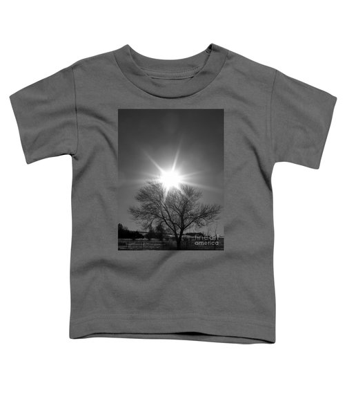 Winter Light Toddler T-Shirt