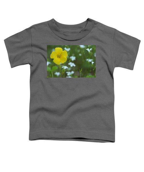 Wood Sorrel And Sandwort Toddler T-Shirt