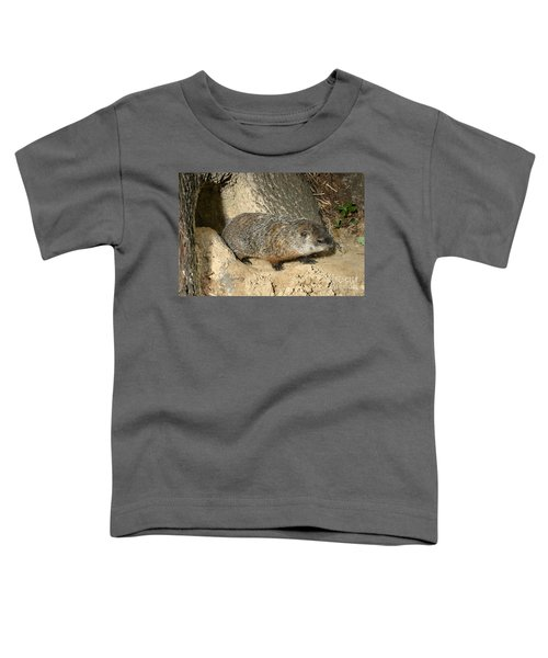 Woodchuck Toddler T-Shirt by Ted Kinsman