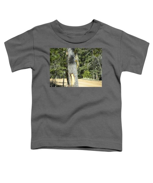 Squirrel Home Divide Co Toddler T-Shirt