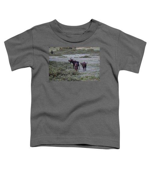 Moose Cameron Pass Co Toddler T-Shirt