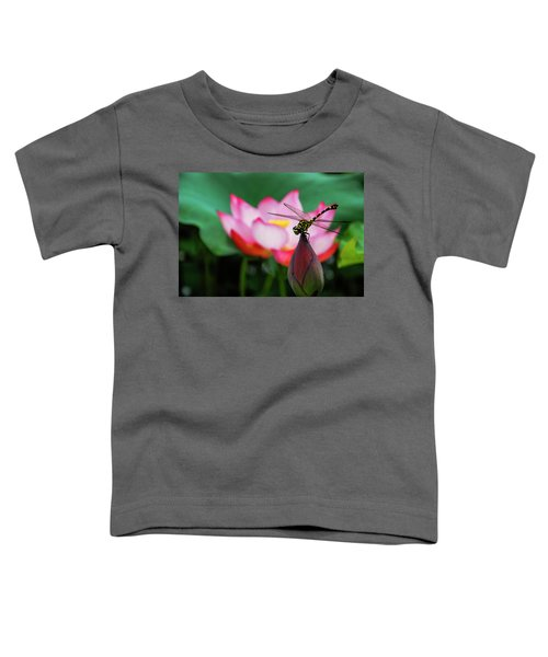 A Dragonfly On Lotus Flower Toddler T-Shirt
