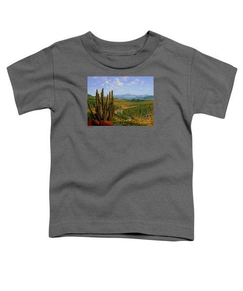 A Place Of Wonder Toddler T-Shirt