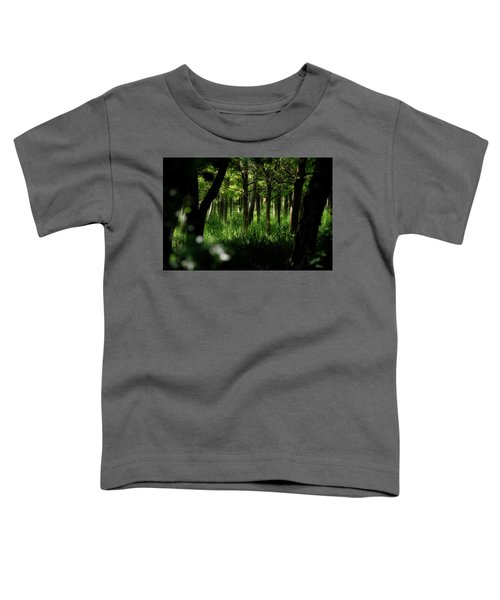 A Walk In The Woods Toddler T-Shirt