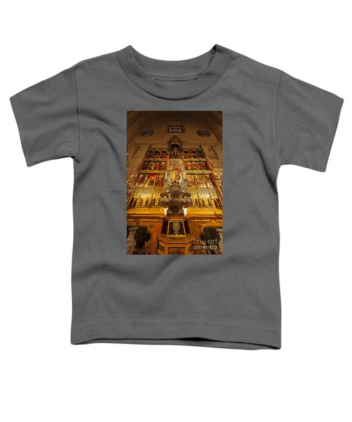 Almudena Cathedral Toddler T-Shirt