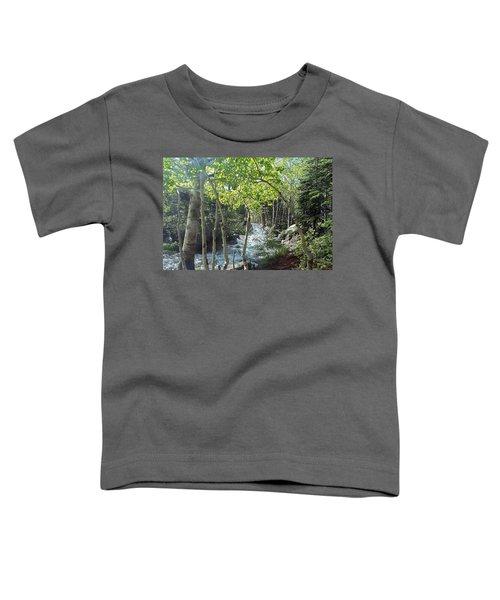 Along Alberta Falls Trail Rocky Mountain National Park Toddler T-Shirt