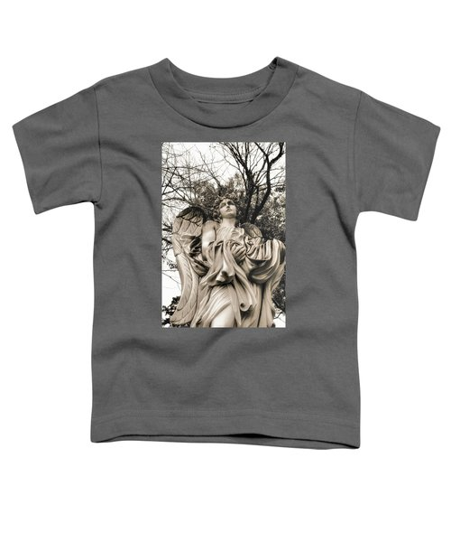 Angel In The Fall Toddler T-Shirt