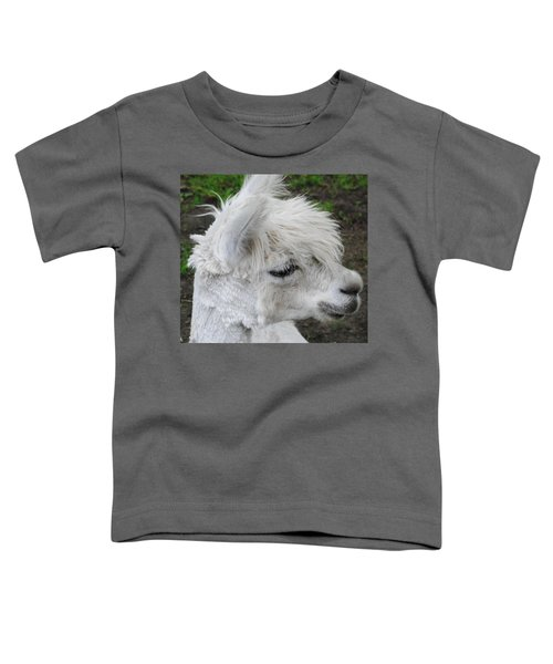 Baby Llama Toddler T-Shirt by Ellen Henneke