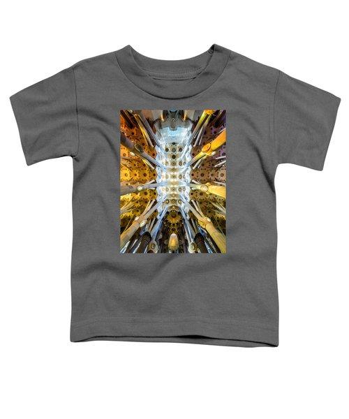 Basilica De La Sagrada Familia Toddler T-Shirt by Randy Scherkenbach