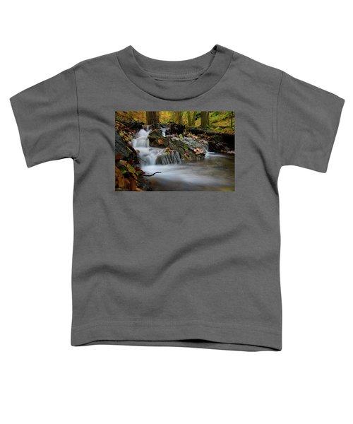 Bodetal, Harz Toddler T-Shirt