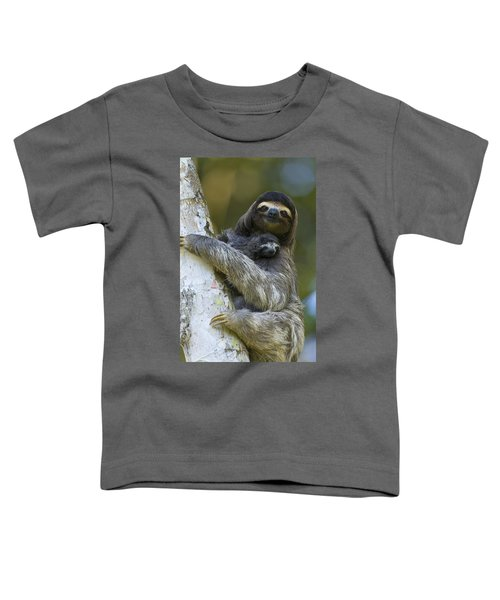 Brown-throated Three-toed Sloth Toddler T-Shirt