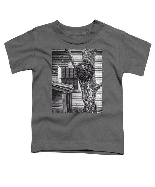 Burl And Window Toddler T-Shirt