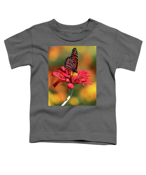 Butterfly On Zinnia Toddler T-Shirt