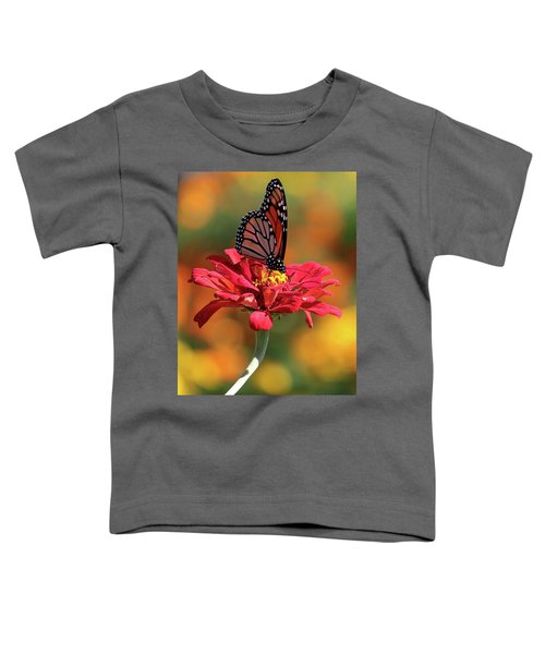 Butterfly On Zinnia Toddler T-Shirt