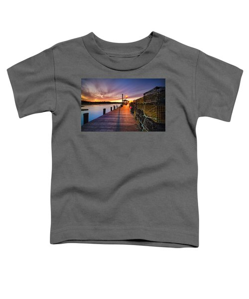 Cape Porpoise Toddler T-Shirt