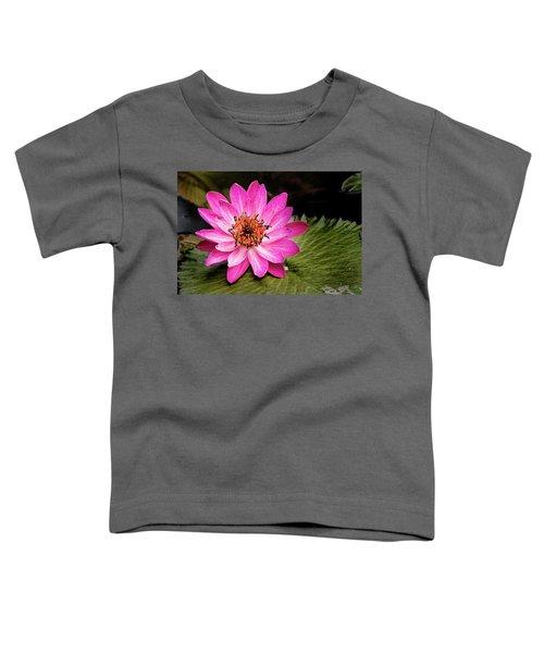 Carroll Creek Water Lily Toddler T-Shirt