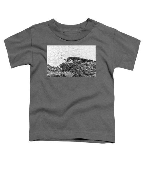 Cliffs At Kullaberg Toddler T-Shirt