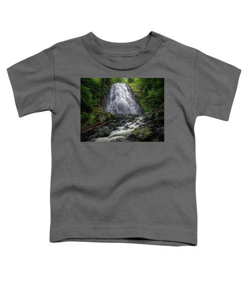Crabtree Falls North Carolina Toddler T-Shirt