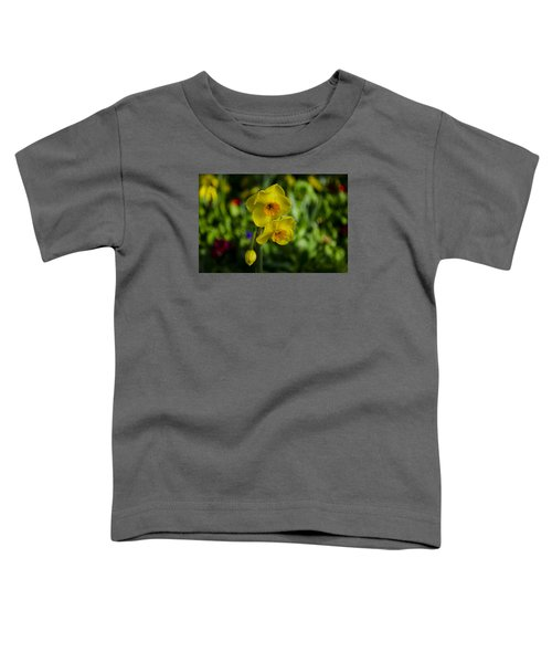 Daffodils Toddler T-Shirt