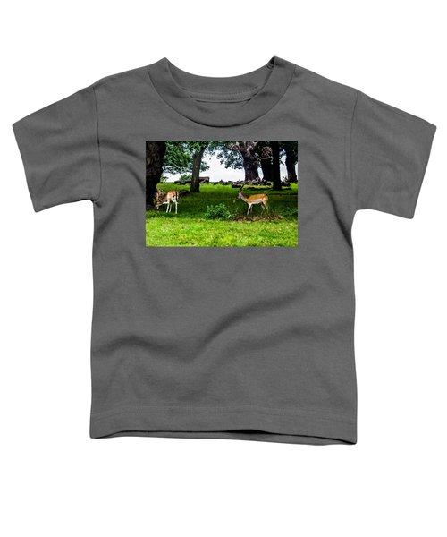 Deer In The Park Toddler T-Shirt