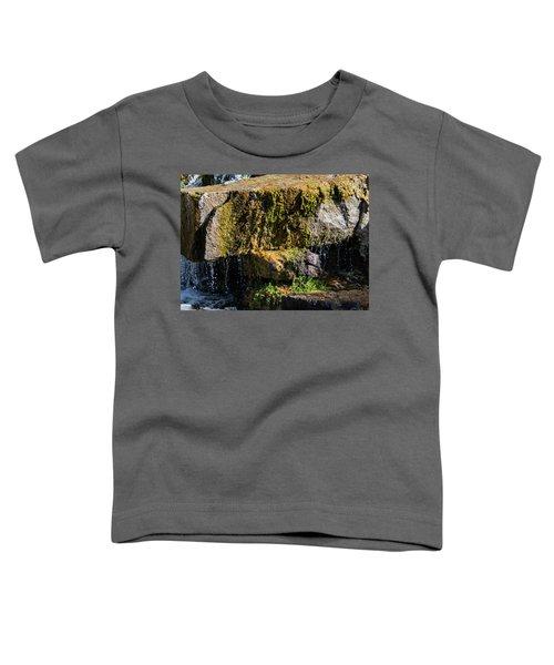 Desert Waterfall 2 Toddler T-Shirt