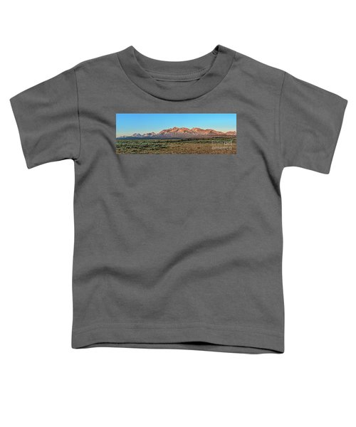 Early Morning Light Toddler T-Shirt