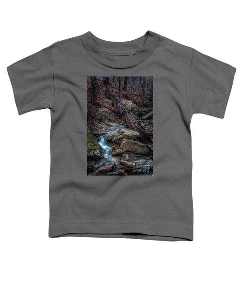 Feeder Creek Toddler T-Shirt