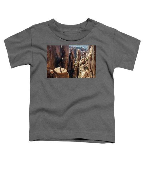 Fiery Furnace Toddler T-Shirt