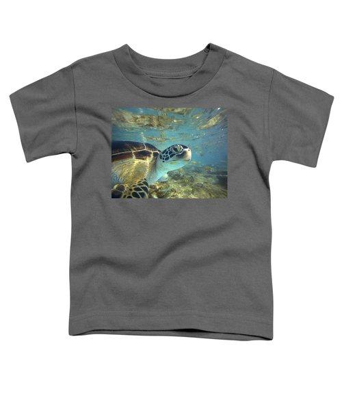 Green Sea Turtle Balicasag Island Toddler T-Shirt