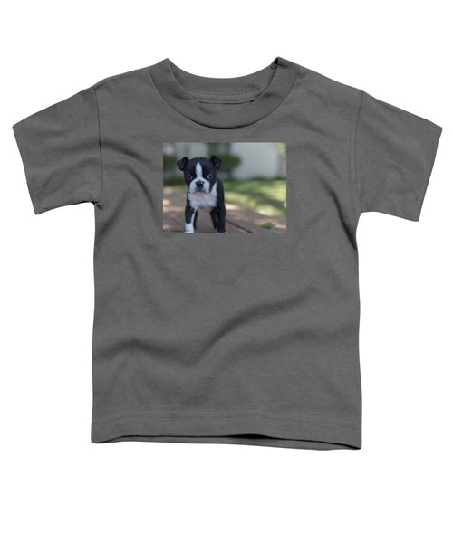 Toddler T-Shirt featuring the photograph Harley As A Puppy by Lora Lee Chapman