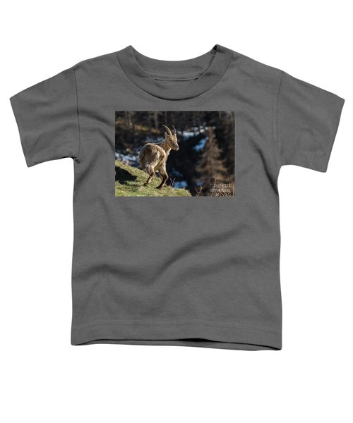 Ibex On The Mountains Toddler T-Shirt