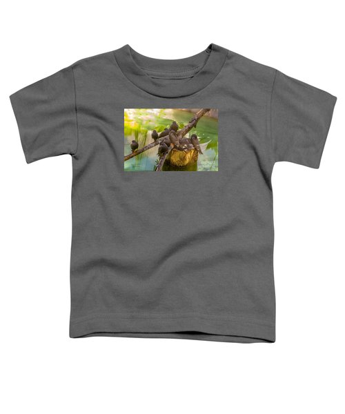 Inca Terns Toddler T-Shirt