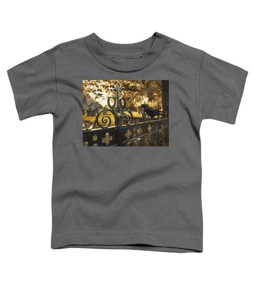 Jackdaw On Church Gates Toddler T-Shirt