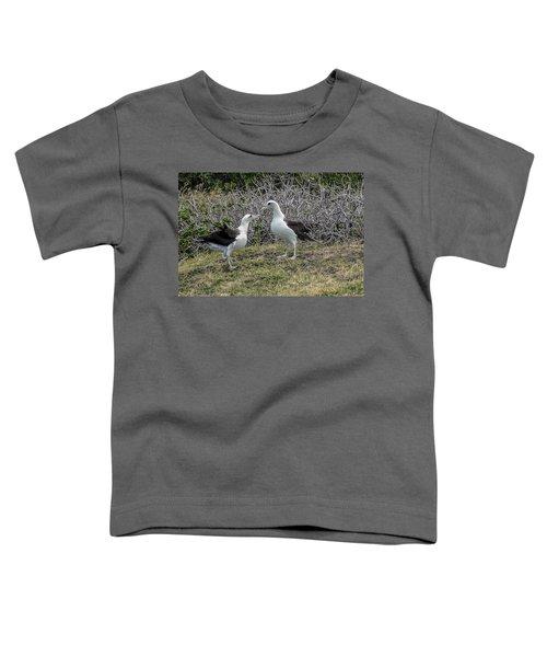 Laysan Albatross Hawaii #2 Toddler T-Shirt