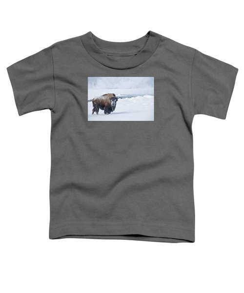 Lone Bison Toddler T-Shirt by Gary Lengyel