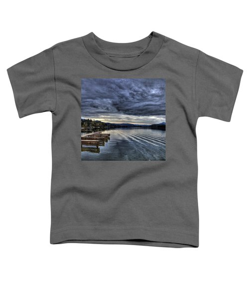 Looking West From 41 South Toddler T-Shirt